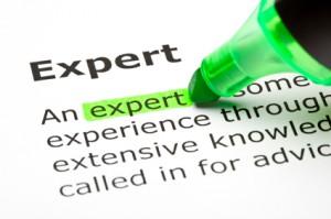 Expert1-300x199